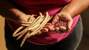 Mãos de moradora exibe colheita realizada em sua nova horta